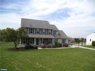 409  Ivy Drive  , Oxford, PA 19363 (#6386363) :: Keller Williams Realty - Matt Fetick Real Estate Team