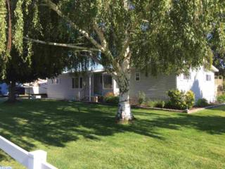 209204 E Schuster Rd  , Kennewick, WA 99337 (MLS #207147) :: United Home Group Tri-Cities