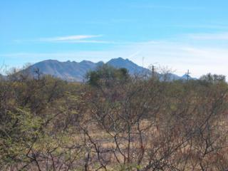 TBD  Burruel  , Tubac, AZ 85646 (MLS #21332274) :: Long Realty - The Vallee Gold Team