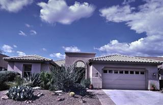 63132 E Harmony Drive  , Tucson, AZ 85739 (#21423016) :: Long Realty - The Vallee Gold Team
