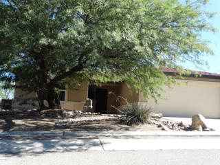 13571 E Diablo Creek Drive  , Vail, AZ 85641 (#21425781) :: Long Realty - The Vallee Gold Team