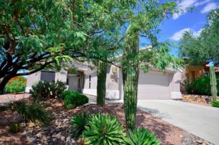 13607 N Sunset Mesa Drive  , Marana, AZ 85658 (#21426409) :: Long Realty - The Vallee Gold Team