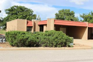 1009 E Irene Street  , Pearce, AZ 85625 (#21426529) :: Long Realty - The Vallee Gold Team
