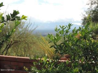 3772 S Via Del Reyecuelo  , Green Valley, AZ 85622 (#21428554) :: Long Realty - The Vallee Gold Team