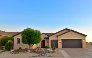 60505 E Arroyo Grande Drive  , Oracle, AZ 85623 (#21429152) :: Long Realty - The Vallee Gold Team