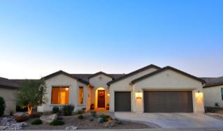 60344 E Arroyo Grande Drive  , Oracle, AZ 85623 (#21432387) :: Long Realty - The Vallee Gold Team