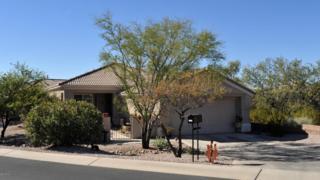 5034 W Desert Chicory Place  , Marana, AZ 85658 (#21433077) :: Long Realty - The Vallee Gold Team