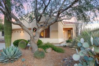 13414 N Sunset Mesa Drive  , Marana, AZ 85658 (#21434128) :: Long Realty - The Vallee Gold Team
