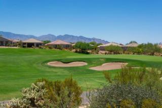 5368 W Winding Desert Drive  , Marana, AZ 85658 (#21500123) :: Long Realty - The Vallee Gold Team