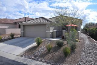 13857 N Heritage Canyon Drive  , Marana, AZ 85658 (#21501803) :: Long Realty - The Vallee Gold Team