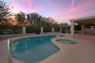 11551 N Palmetto Dunes Avenue  , Tucson, AZ 85737 (#21502443) :: Long Realty - The Vallee Gold Team