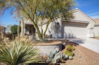 13343 N Heritage Gateway Avenue  , Marana, AZ 85658 (#21502563) :: Long Realty - The Vallee Gold Team