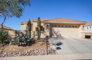 13689 N Heritage Canyon Drive  , Marana, AZ 85658 (#21502675) :: Long Realty - The Vallee Gold Team