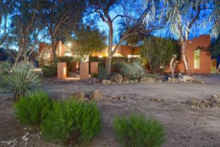 3030 N Elena Maria Street  , Tucson, AZ 85750 (#21502690) :: The Vanguard Group