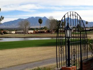 624 S Abrego Drive  , Green Valley, AZ 85614 (#21502983) :: Long Realty - The Vallee Gold Team