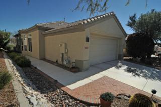 13100 N Desert Flora Lane  , Marana, AZ 85658 (#21504382) :: Long Realty - The Vallee Gold Team