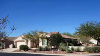 13812 N Heritage Canyon Drive  , Marana, AZ 85658 (#21504652) :: Long Realty - The Vallee Gold Team