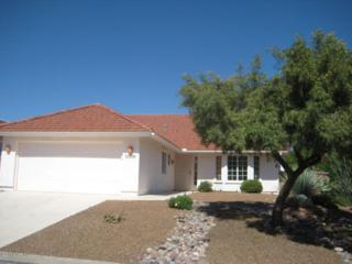 10160 N Fox Hunt Lane  , Tucson, AZ 85737 (#21504892) :: The Vanguard Group