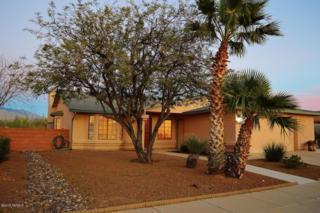 8670 N Chinaberry Way  , Tucson, AZ 85742 (#21504935) :: The Vanguard Group