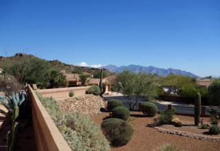 5047 W Desert Poppy Lane  , Marana, AZ 85658 (#21505372) :: Long Realty - The Vallee Gold Team