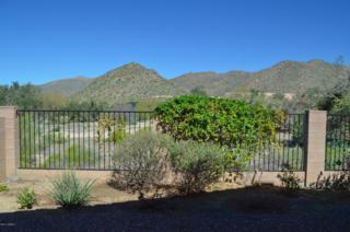 5368 W Tortolita Flats Lane  , Marana, AZ 85658 (#21506338) :: The Vanguard Group