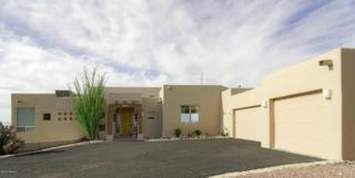 3941 N River Bluff Place  , Tucson, AZ 85750 (#21507419) :: Long Realty Company