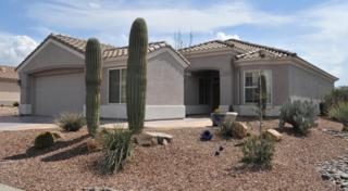 5051 W Desert Poppy Lane  , Marana, AZ 85658 (#21508537) :: Long Realty - The Vallee Gold Team