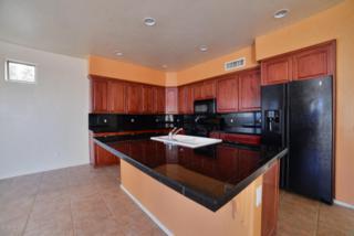 3443 N Camino La Jicarrilla  , Tucson, AZ 85712 (#21509056) :: The Vanguard Group