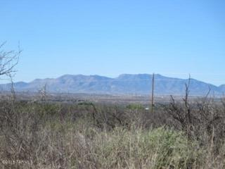 9.27ac N Cascabel Road  , Benson, AZ 85602 (#21509690) :: Long Realty Company