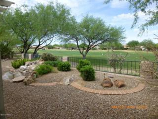 1305 N Birds Nest Road  , Green Valley, AZ 85614 (#21510323) :: Long Realty - The Vallee Gold Team
