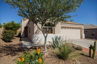 13820 N Buckhorn Cholla Drive  , Marana, AZ 85658 (#21510846) :: Long Realty - The Vallee Gold Team