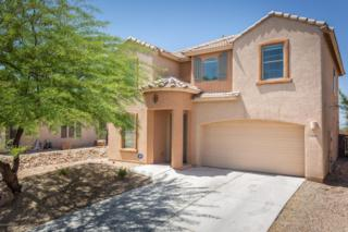 10668 S Kush Canyon Lane  , Vail, AZ 85641 (#21511921) :: The Vanguard Group