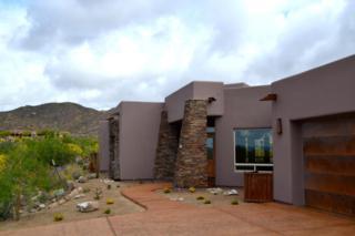 1066 W Tortolita Mountain Circle  , Oro Valley, AZ 85755 (#21512245) :: The Vanguard Group