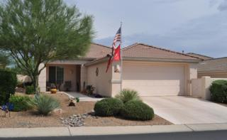 13634 N Gold Cholla Place  , Marana, AZ 85658 (#21512618) :: Long Realty - The Vallee Gold Team