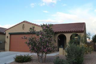 8626 N Western Juniper Terrace  , Tucson, AZ 85743 (#21513253) :: Long Realty - The Vallee Gold Team