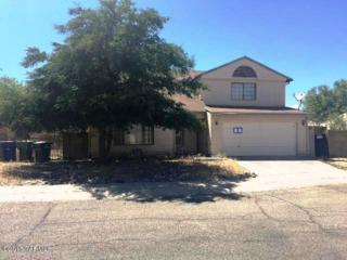 1723 W Holly Oak Drive  , Tucson, AZ 85746 (#21514689) :: Long Realty Company