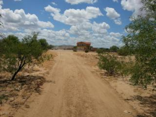 7615 W Zorro Road  -, Tucson, AZ 85746 (#21514828) :: Long Realty Company