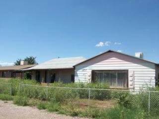 314 W Irvine Avenue  , Pirtleville, AZ 85626 (MLS #21515052) :: Carrington Real Estate Services