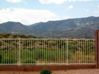 39735 S Diamond Bay Drive  , Tucson, AZ 85739 (MLS #21518385) :: Carrington Real Estate Services