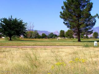1  Golf Lot #55 On Geneva  , Pearce, AZ 85625 (#21227942) :: Long Realty - The Vallee Gold Team