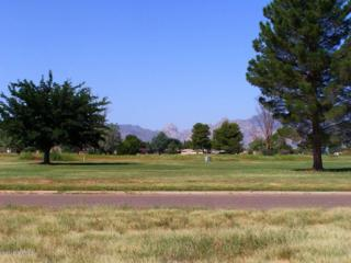 1  Golf Lot # 54 On Geneva  , Pearce, AZ 85625 (#21227944) :: Long Realty - The Vallee Gold Team