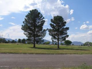 2  Golf Lots On Geneva Street  , Pearce, AZ 85625 (#21227947) :: Long Realty - The Vallee Gold Team
