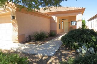 5379 W Tearblanket Place  , Marana, AZ 85658 (#21425553) :: Long Realty - The Vallee Gold Team