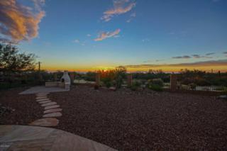 13641 N Buckhorn Cholla Drive  , Marana, AZ 85658 (#21431145) :: Long Realty - The Vallee Gold Team