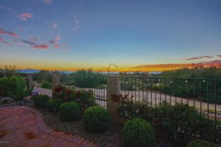 13745 N Buckhorn Cholla Drive  , Marana, AZ 85658 (#21431380) :: Long Realty - The Vallee Gold Team