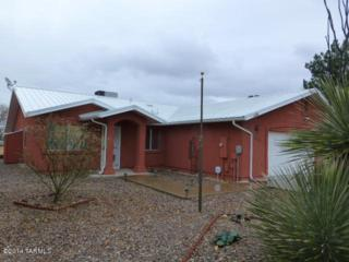 300 N Dale Road  , Pearce, AZ 85625 (#21433216) :: Long Realty - The Vallee Gold Team