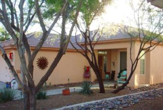 5373 W Winding Desert Drive  , Marana, AZ 85658 (#21434357) :: Long Realty - The Vallee Gold Team
