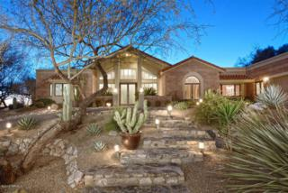 7190 E Desert Moon Loop  , Tucson, AZ 85750 (#21504670) :: Long Realty - The Vallee Gold Team