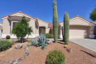 5192 W Heritage Gateway Place  , Marana, AZ 85658 (#21512711) :: Long Realty - The Vallee Gold Team