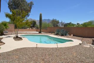 7342 N Casablanca Drive  , Tucson, AZ 85704 (MLS #21515057) :: Carrington Real Estate Services